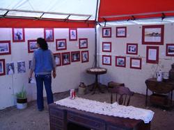 Exposición Fotográfica, Aniversario Valle de las Palmas, 2008.